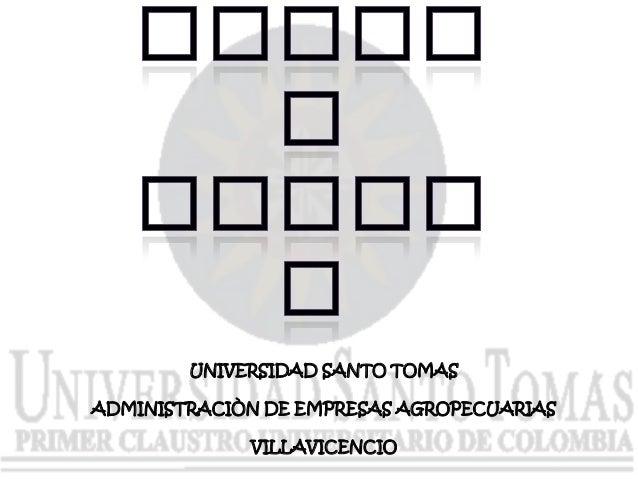 UNIVERSIDAD SANTO TOMAS ADMINISTRACIÒN DE EMPRESAS AGROPECUARIAS VILLAVICENCIO