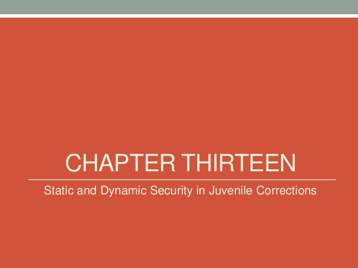 CHAPTER THIRTEENStatic and Dynamic Security in Juvenile Corrections