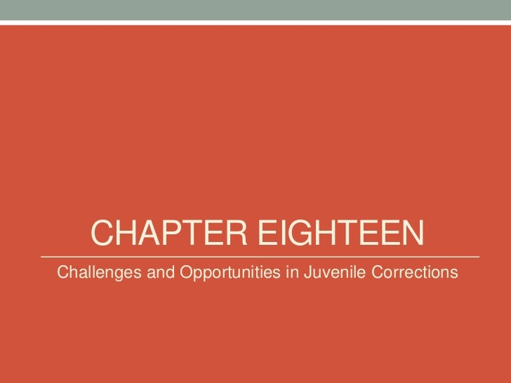 CHAPTER EIGHTEENChallenges and Opportunities in Juvenile Corrections