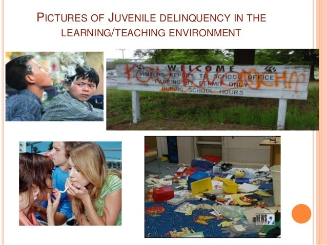 juvenile crime and how it affects our society Free essay on crime problems  crime is a serious issue that affects everyone in society it affects the  juvenile crime is the focus of.