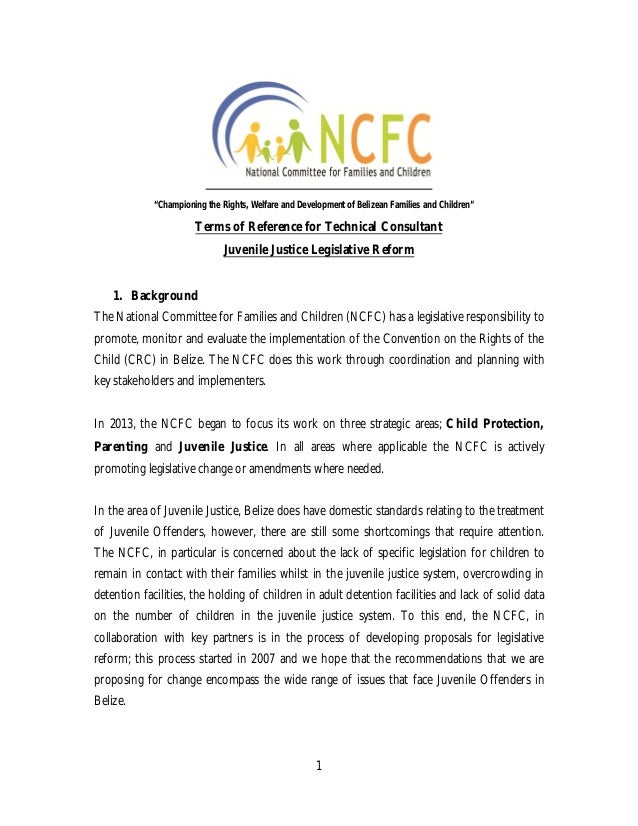 1 Terms of Reference for Technical Consultant Juvenile Justice Legislative Reform 1. Background The National Committee for...