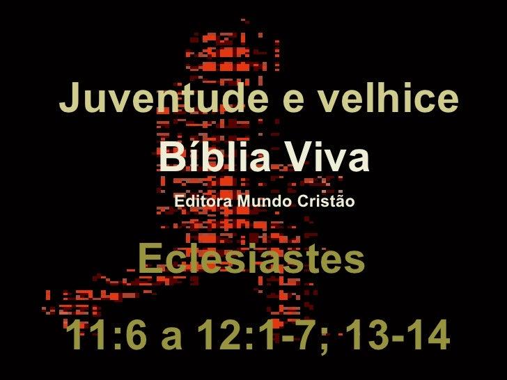 Bíblia Viva Editora Mundo Cristão Eclesiastes  11:6 a 12:1-7; 13-14 Juventude e velhice