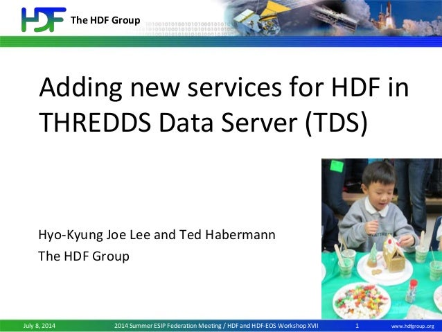 The HDF Group www.hdfgroup.orgJuly 8, 2014 2014 Summer ESIP Federation Meeting / HDF and HDF-EOS Workshop XVII Adding new ...