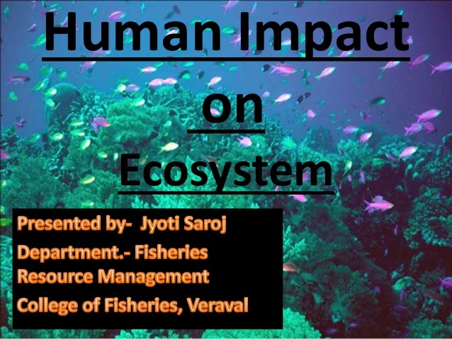 human impact on the ecosystem essay Discuss the human impact on oceans this is not an example of the work written by our professional essay so do the human impacts on the marine environment.