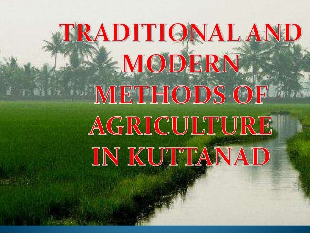 FACTORS WHICH PERSUADE  THEM TO BEGIN PADDY  CULTIVATION