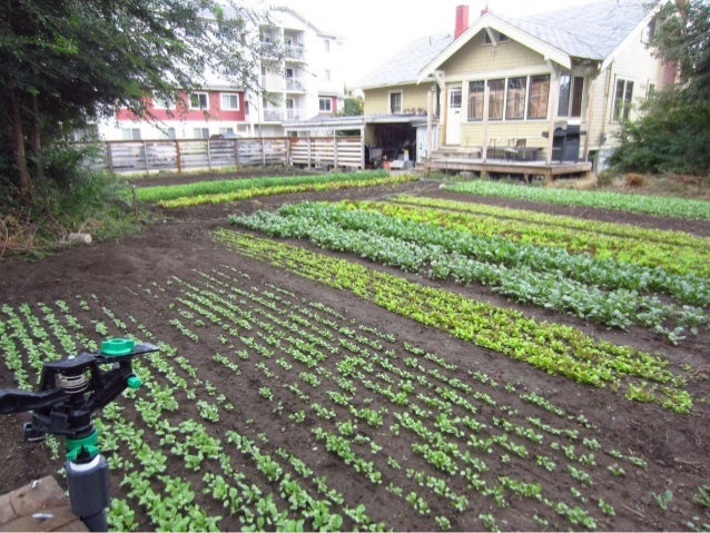 Stone Garden Farms The 10 essentials to profitable urban farming presented by curtis s harvesting planting marketing workwithnaturefo