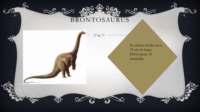 BRONTOSAURUS Su cabeza medía unos 55 cm de largo. Debió pesar 30 toneladas.