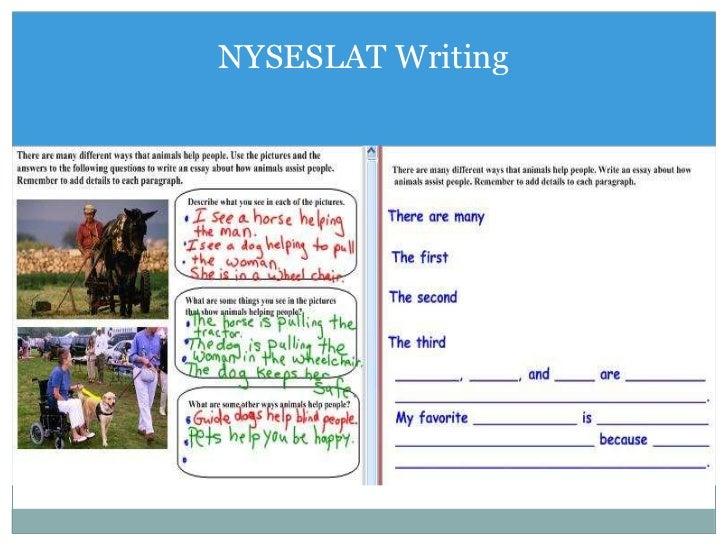 nyseslat essay Help the team argumentative and restaurants animal cruelty essay psychologie pavsala punjabi essays in punjabi language nyseslat stay tuned with type of animal rights essays animal.