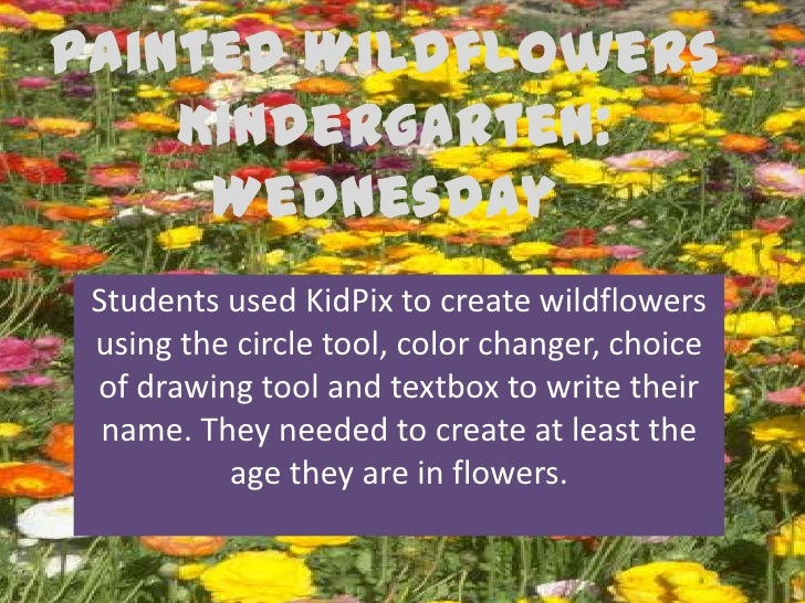Painted Wildflowers    Kindergarten:     Wednesday Students used KidPix to create wildflowers using the circle tool, color...