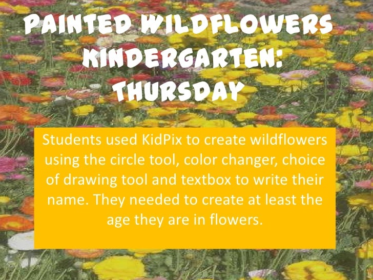 Painted Wildflowers    Kindergarten:      Thursday Students used KidPix to create wildflowers using the circle tool, color...