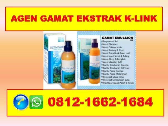 K-Link Gamat Extract, HP/WA 0812-1662-1684(T-Sel)