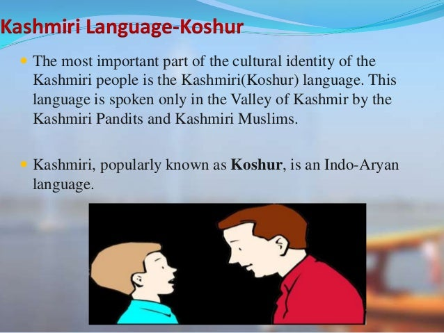 kashmiri culture There are seven basic elements of a culture and almost all of them along with their sub elements exist in every nation and country these elements will be explained with context to kashmir and kashmiri people onwards.