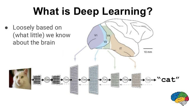 """""""cat"""" ● Loosely based on (what little) we know about the brain What is Deep Learning?"""