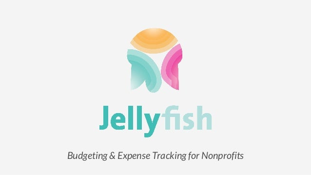 Budgeting & Expense Tracking for Nonprofits