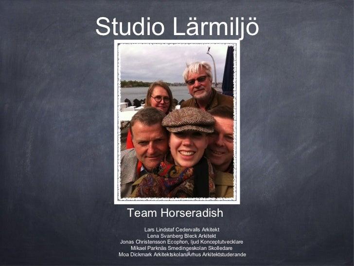 Studio Lärmiljö     Team Horseradish           Lars Lindstaf Cedervalls Arkitekt             Lena Svanberg Bleck Arkitekt ...