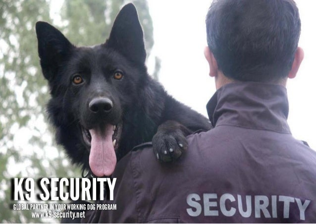 K9 SECURITYGLOBAL PARTNER IN YOUR WORKING DOG PROGRAM       www.k9-security.net