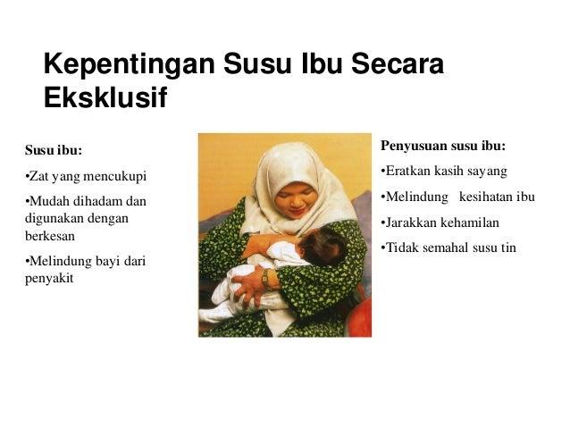apakah ibu menyusui bisa hamil