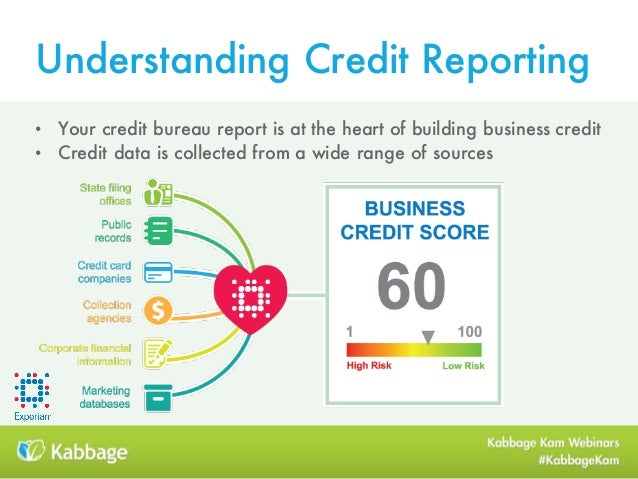 Earning your cred understand leverage business credit reduce personal risk 10 understanding credit reporting reheart Image collections