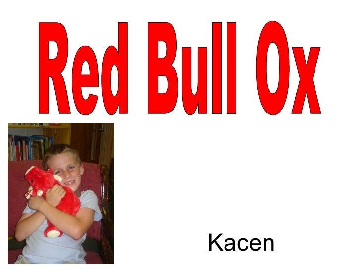 Red Bull Ox Kacen