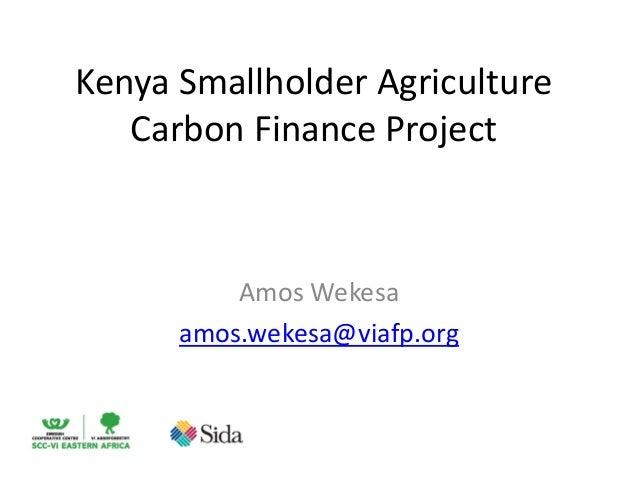 Kenya Smallholder AgricultureCarbon Finance ProjectAmos Wekesaamos.wekesa@viafp.org