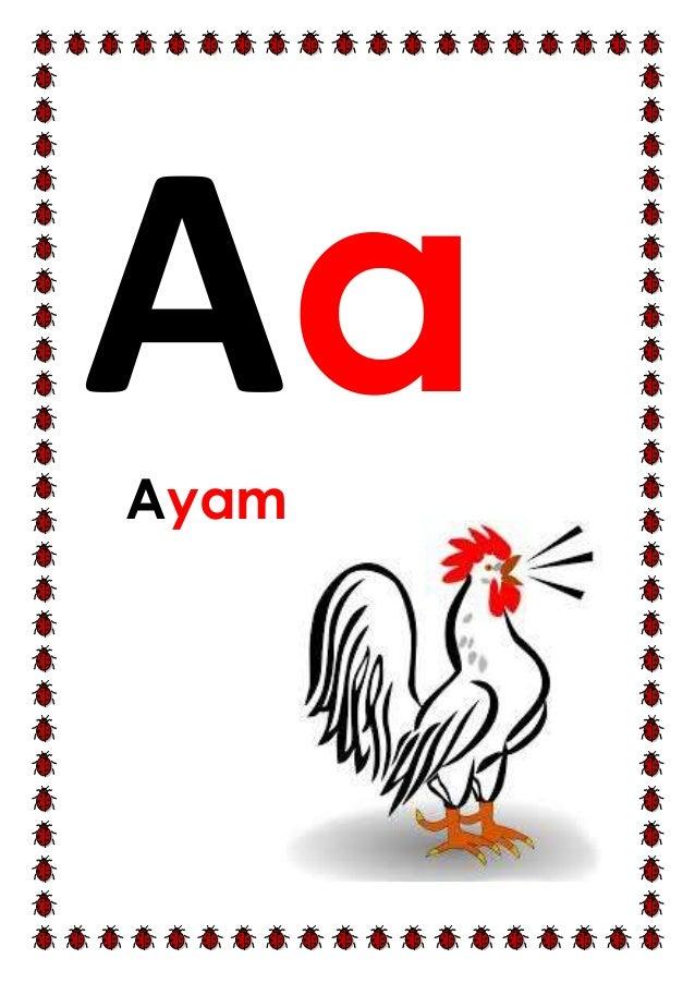 Aa nkn Ayam