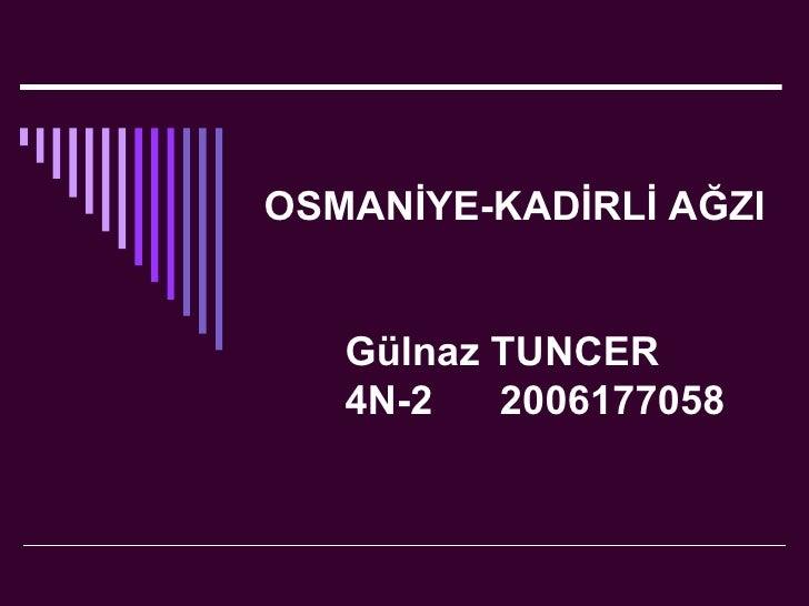 OSMANİYE-KADİRLİ AĞZI Gülnaz TUNCER 4N-2  2006177058