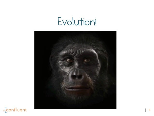5 Evolution!