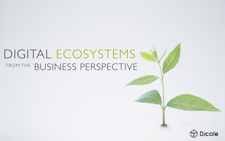 DIGITAL ECOSYSTEMS FROM THE            BUSINESS PERSPECTIVE