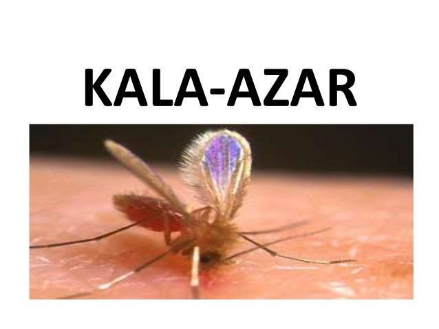 KALA AZAR CONTROL PROGRAMME- INDIA