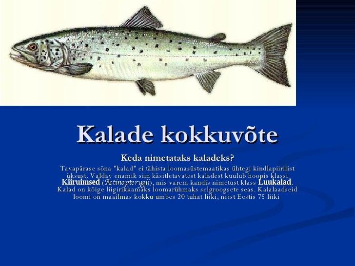 """Kalade kokkuv õ te Keda nimetataks kaladeks? Tavapärase sõna """"kalad"""" ei tähista loomasüstemaatikas ühtegi kindla..."""