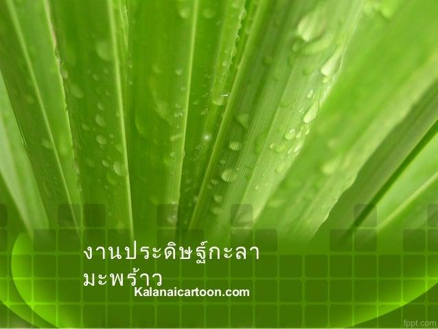 งานประดิษ ฐ์ก ะลามะพร้า ว    Kalanaicartoon.com