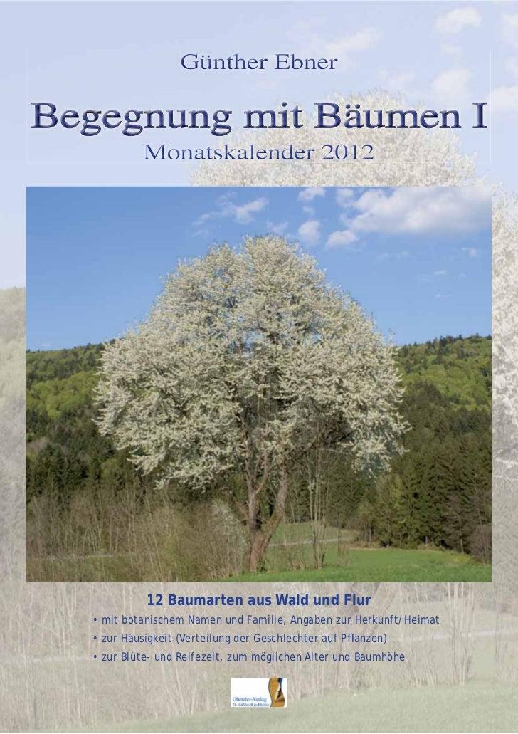 12 Baumarten aus Wald und Flur• mit botanischem Namen und Familie, Angaben zur Herkunft/Heimat• zur Häusigkeit (Verteilung...