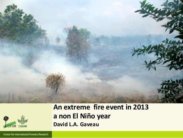 An extreme fire event in 2013 a non El Niño year David L.A. Gaveau
