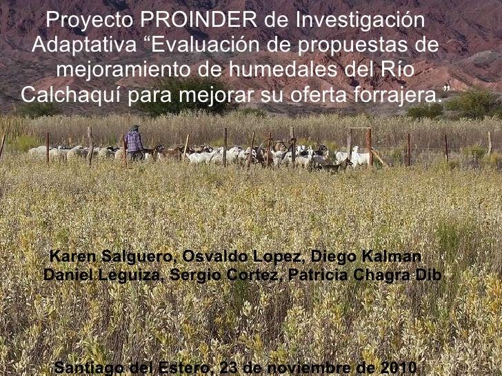 """Proyecto PROINDER de Investigación Adaptativa """"Evaluación de propuestas de mejoramiento de humedales del Río Calchaquí par..."""