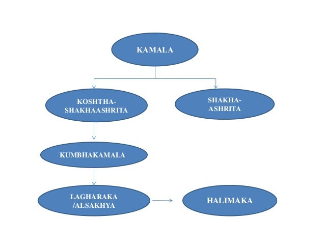 Kamala final Slide 3