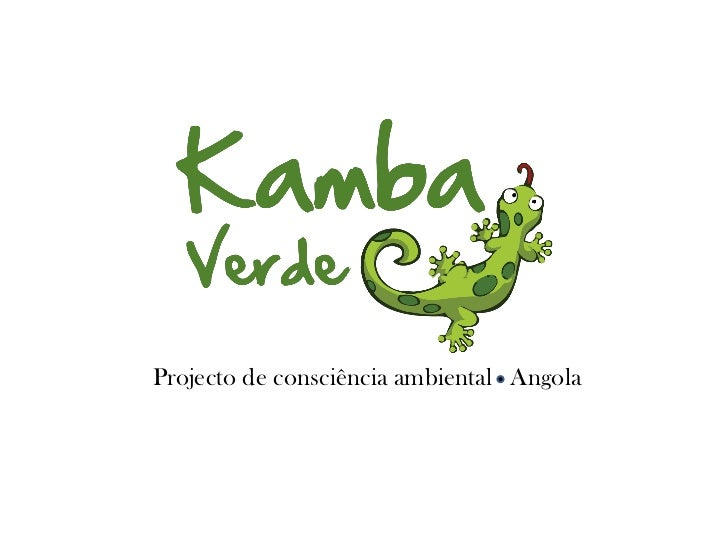 Projecto de consciência ambiental Angola