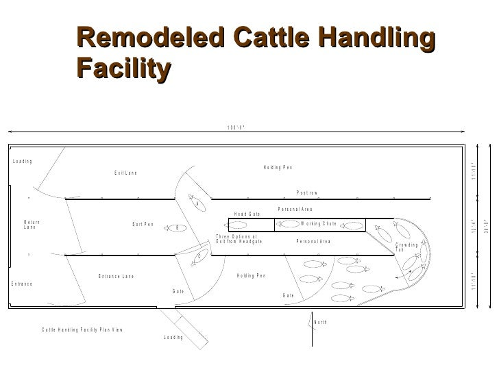 Beef Cattle Working Facility Designs Joy Studio Design Interiors Inside Ideas Interiors design about Everything [magnanprojects.com]