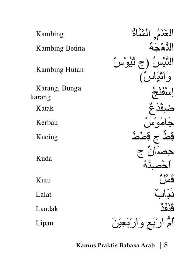 Image Result For Arab Gila