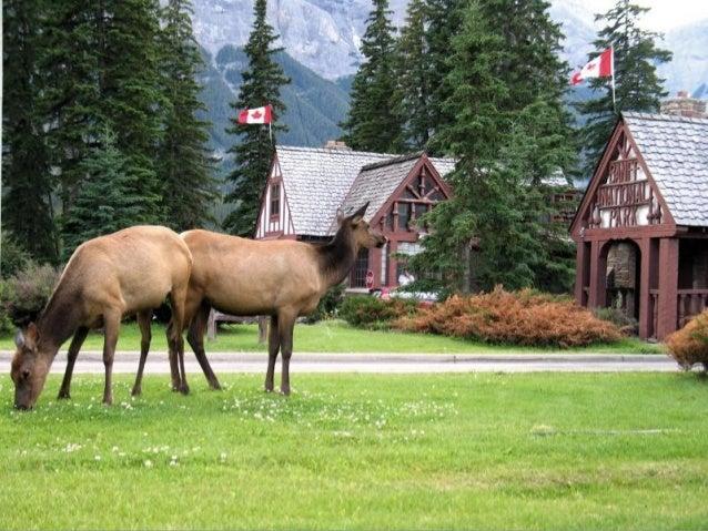 Kanadanarodnipark Slide 2
