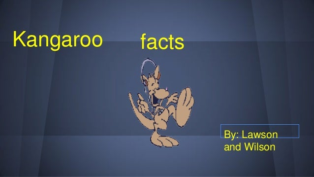 Kangaroo facts By: Lawson and Wilson