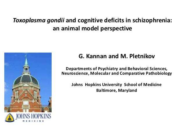 Toxoplasma gondii and cognitive deficits in schizophrenia:             an animal model perspective                        ...