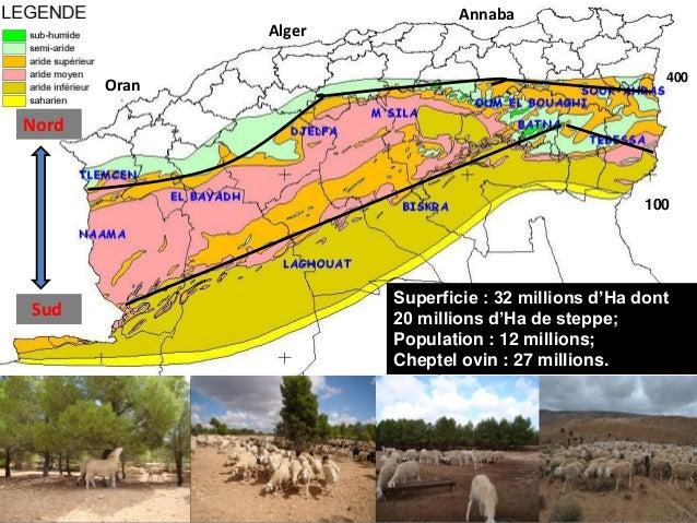 Les leviers de flexibilité activés par les agropasteurs de Djelfa pour faire face au changement climatique - KANOUN Slide 2