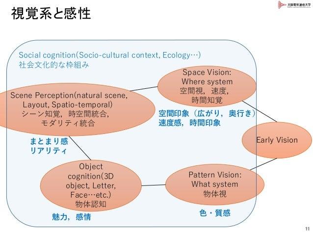 視覚系と感性 11 Early Vision Space Vision: Where system 空間視,速度, 時間知覚 Pattern Vision: What system 物体視 Object cognition(3D object,...