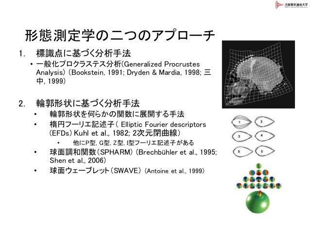 形態測定学の二つのアプローチ 1. 標識点に基づく分析手法 • 一般化プロクラステス分析(Generalized Procrustes Analysis) (Bookstein, 1991; Dryden & Mardia, 1998; 三 中...