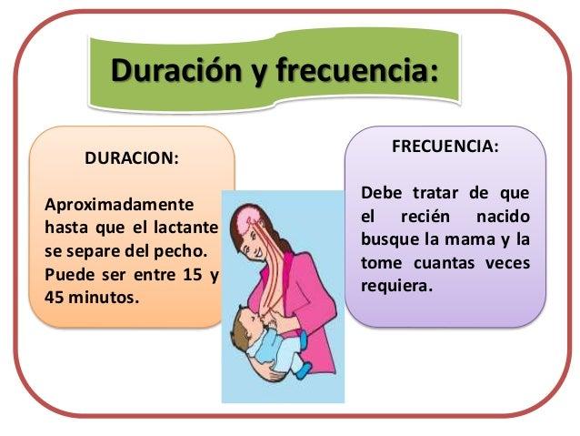 Lactancia materna rotafolio - Alimentos para producir leche materna ...
