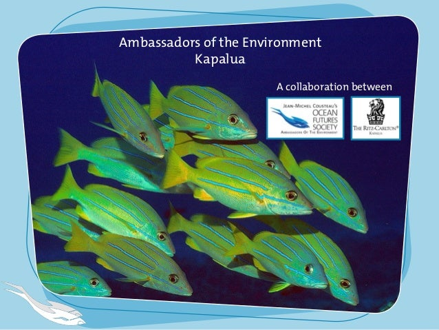 Ambassadors of the Environment Kapalua