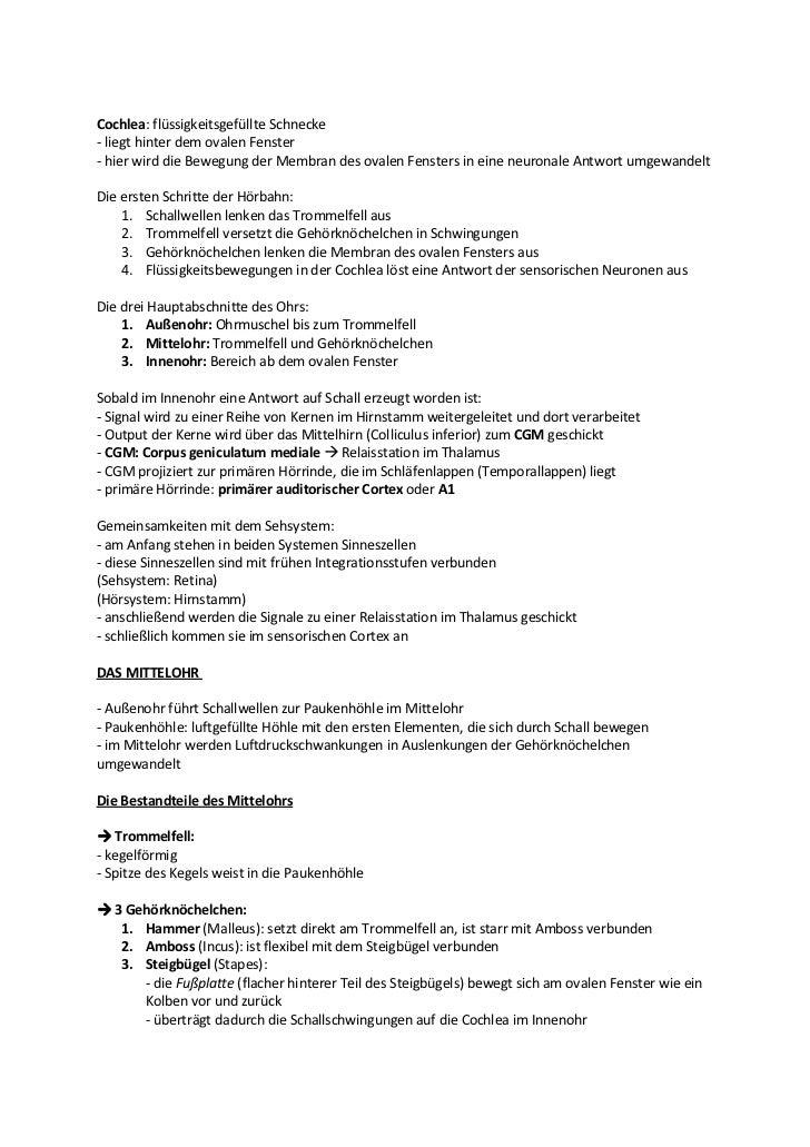 Ungewöhnlich Malleus Incus Steigbügel Bilder - Anatomie Von ...