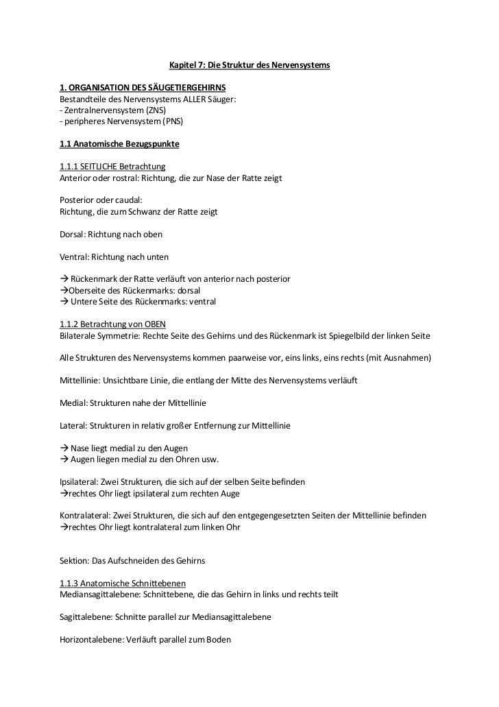 Kapitel 7: Die Struktur des Nervensystems1. ORGANISATION DES SÄUGETIERGEHIRNSBestandteile des Nervensystems ALLER Säuger:-...