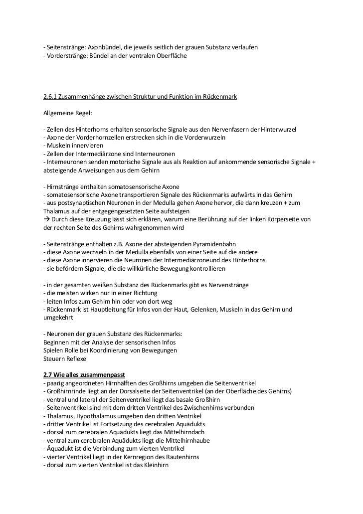 Tolle Neuron Arbeitsblatt Antworten Ideen - Mathe Arbeitsblatt ...