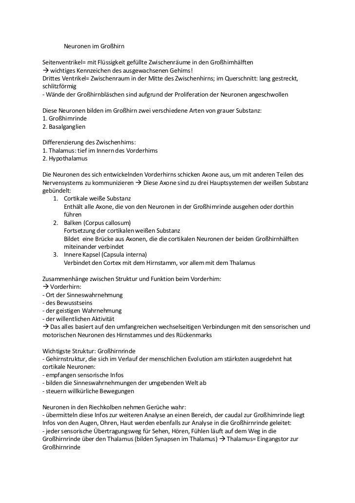 Atemberaubend Anatomie Der Inneren Kapsel Zeitgenössisch ...